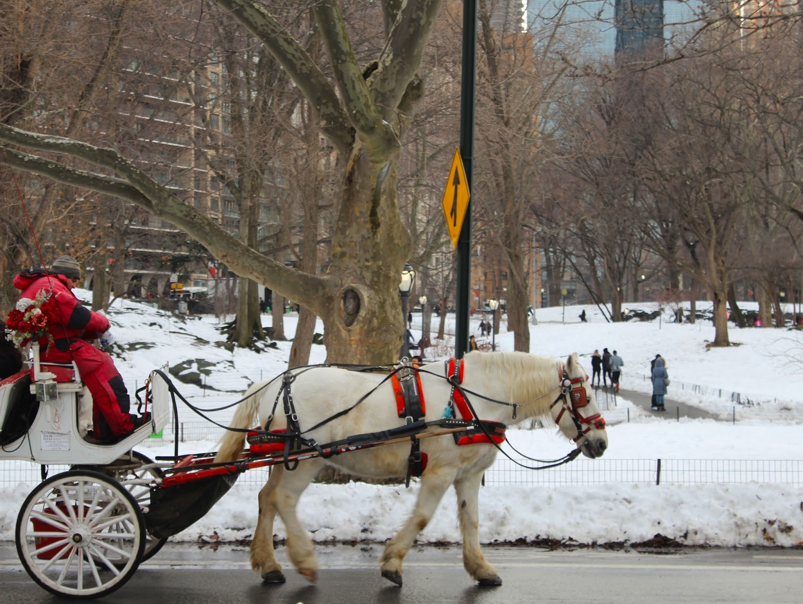 valentine's day carriage ride