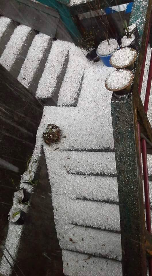 Hailstone in Darjeeling 9