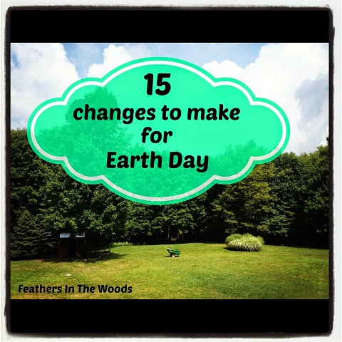 make green changes for earth day