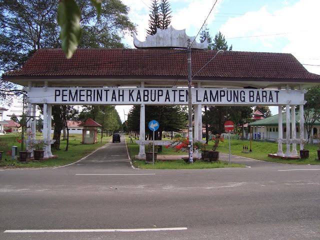 Agen Resmi Qnc Jelly Gamat Liwa Kabupaten Lampung Barat