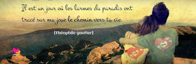 Phrase avec citation de Théophile Gautier
