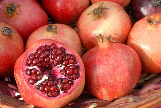 Nutrisi yang tepat untuk Menurunkan Kolesterol Jahat