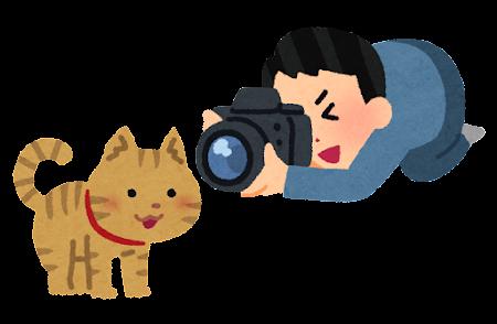猫の写真を撮る人のイラスト