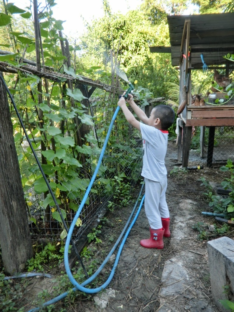 Let's gardening : teaching lil' Iman the name of the plants