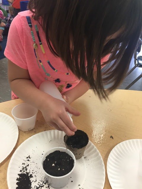 Teaching a traditional kindergarten plant unit through inquiry based learning and integrating procedural how-to writing into the kindergarten science curriculum.