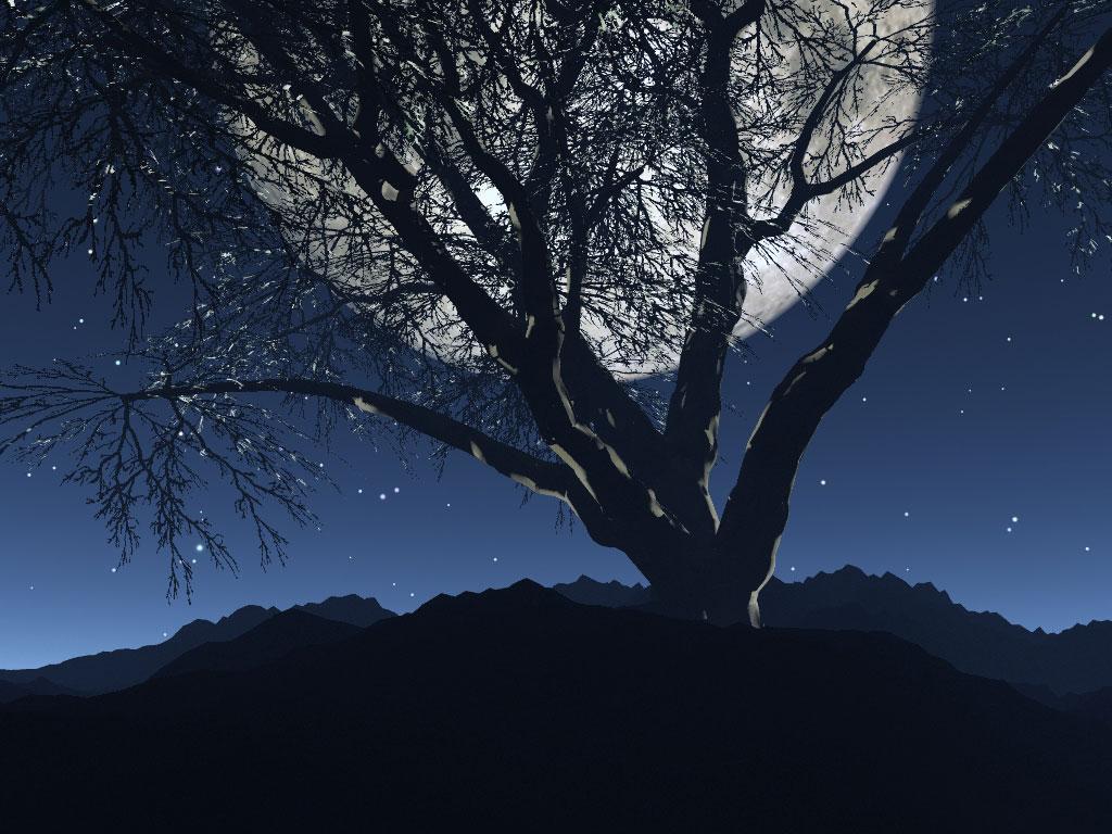 Mensagens Lua Cheia: Gifs Animados Cia: Noite Com Lua Cheia