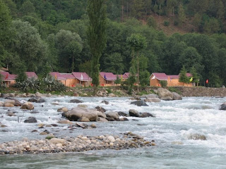riverside, riverbed, beas, water