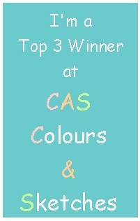 Top 3 at CAS C&S#50