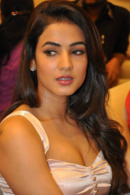 "Sonal Chauhan Sexy Cleavage Show At Telugu Film ""Pandaga Chesko"" Success Meet In Hyderabad"