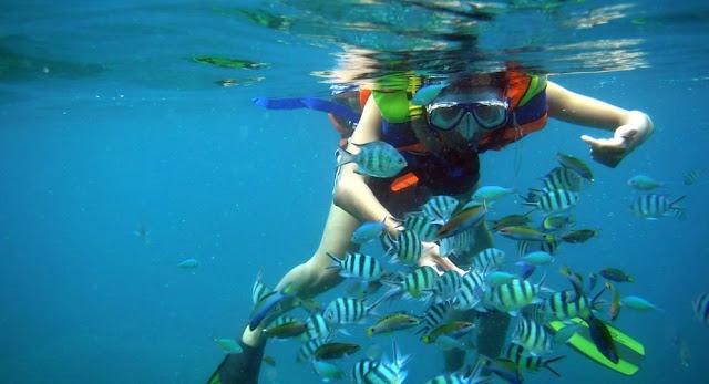 5 Tips Kegiatan Seru Menikmati Liburan di Pantai, Menyelam Bersama ikan - ikan kecil di Kepulauan Karimunjawa, Jawa tengah