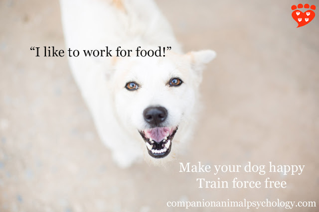 "A happy white dog says ""I like to work for food"""