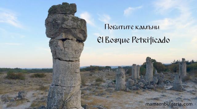 El Bosque Petrificado Pobitite Kamani Bulgaria