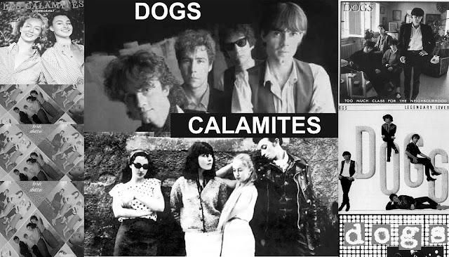 Dogs - Calamités
