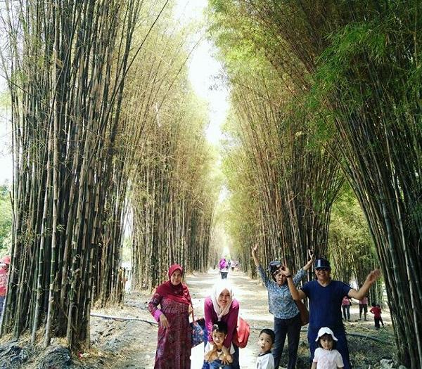 tempat wisata di Surabaya Taman Sakura Keputih
