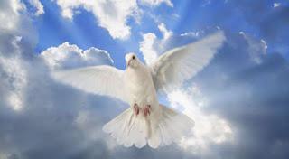 Salmo 139 - Oração Poderosa para se cercar da proteção Divina