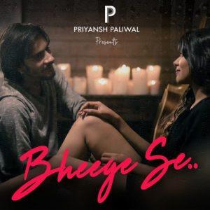 Bheege Se – Priyansh Paliwal
