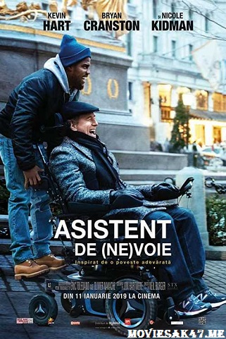 The Upside (2017) Full English Movie 480p 720p HD Download WEB-DL