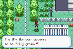 pokemon kairos screenshot 2