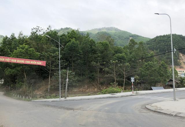 """Quảng Ngãi: Bí thư huyện Sơn Tây gian dối, """"ỉm"""" 13ha đất rừng"""