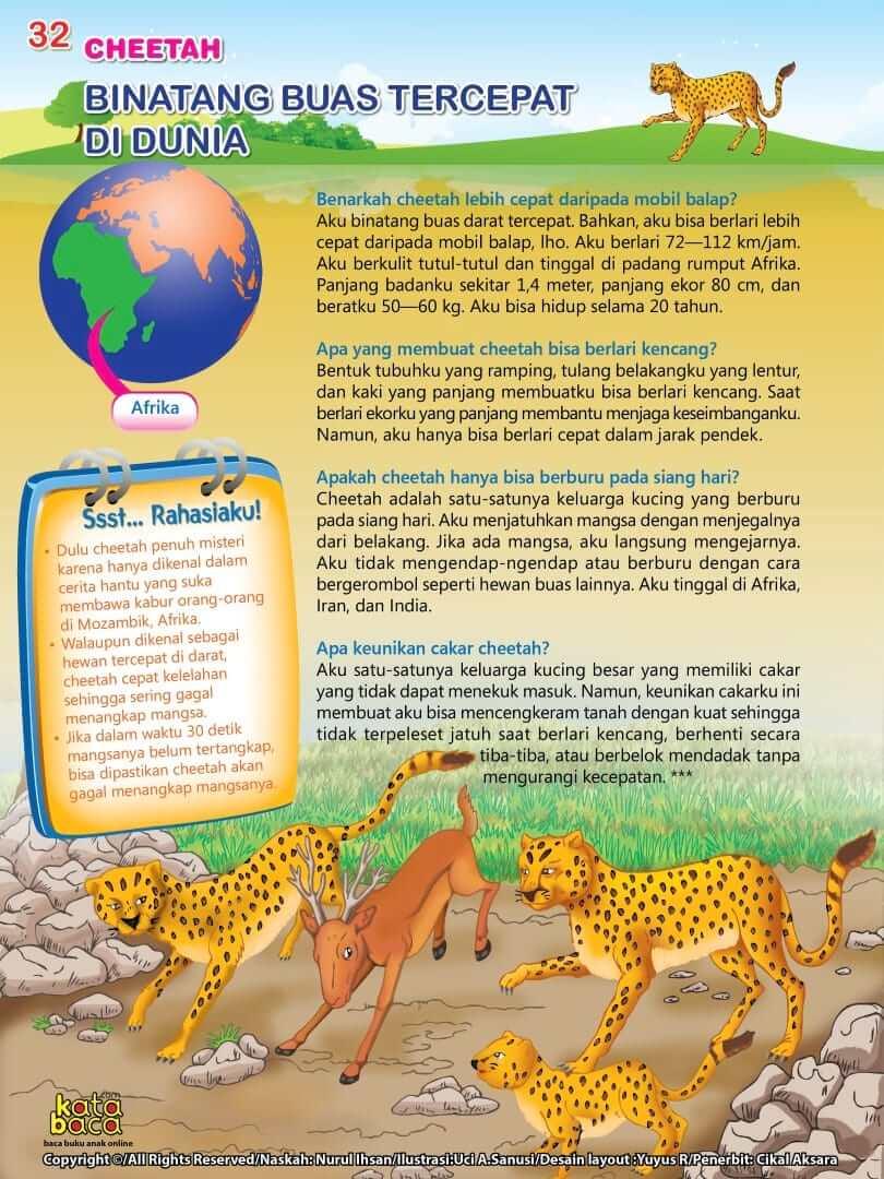 Cheetah adalah Binatang Buas Tercepat di Dunia