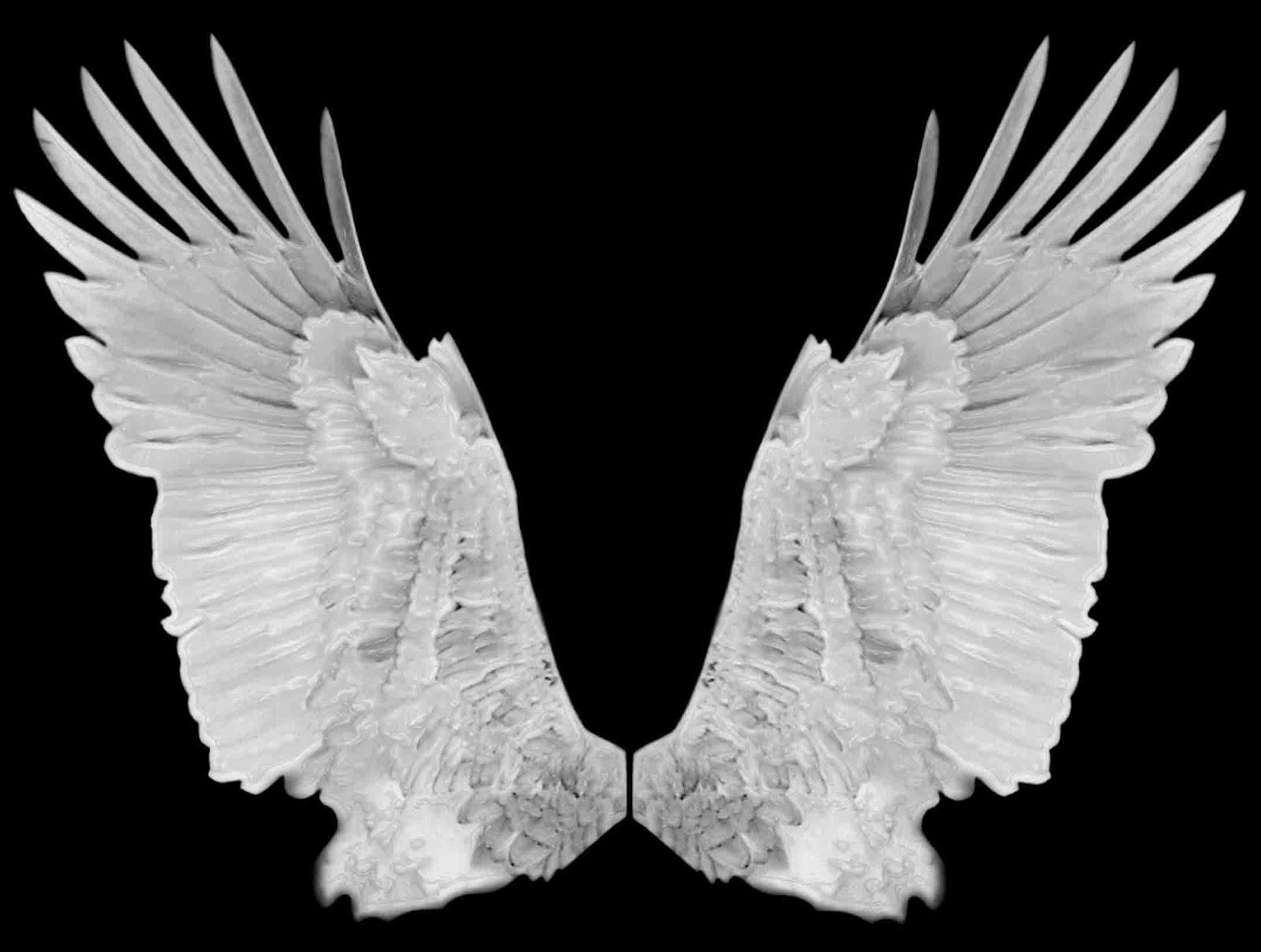 каждой картинка крыло ангела файл загрузится сервер