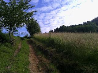 camminare, erba, meditazione, verde, viaggio