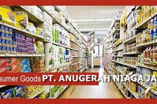 Lowongan Kerja PT. Anugerah Niaga Jaya Pekanbaru Maret 2019