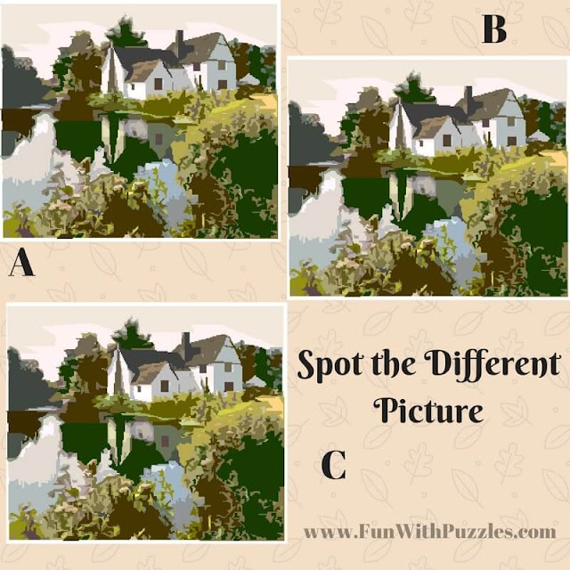 Spot The Different Picture Puzzles-Lake
