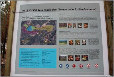 Panel informativo en la Fuente De La Ardilla (en día lluvioso)