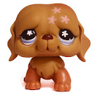 Littlest Pet Shop 3-pack Scenery St. Bernard (#481) Pet