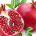 SRF Vacancy in National Research Centre On Pomegranate-2017