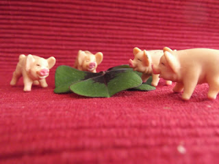 Kleine Marzipanschweinchen an einem Glücks-Kleeblatt knabbernd