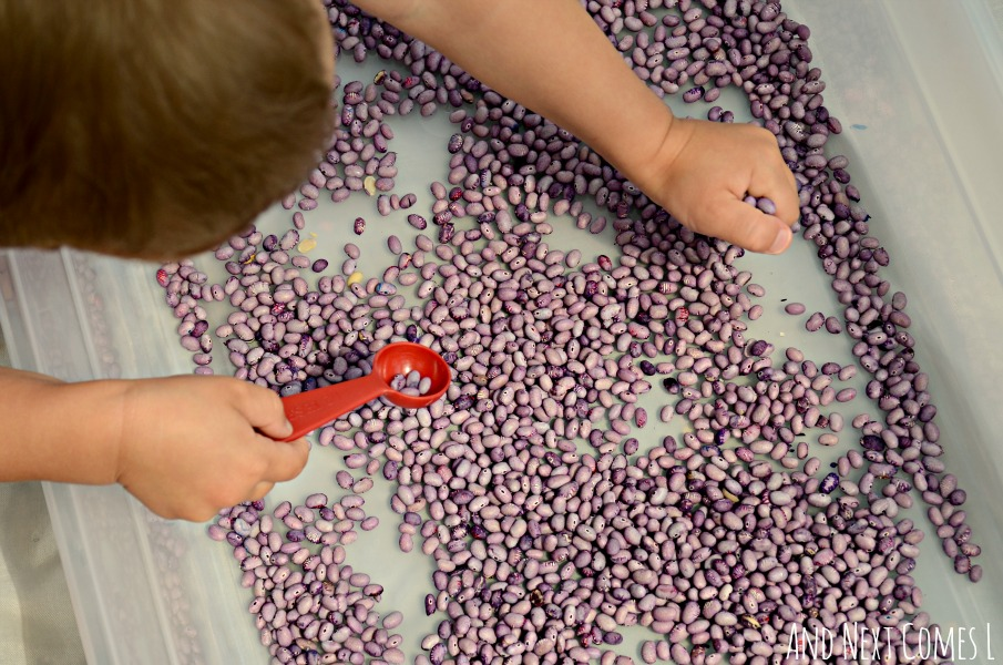 Playing with lavender scented & dyed beans from And Next Comes L