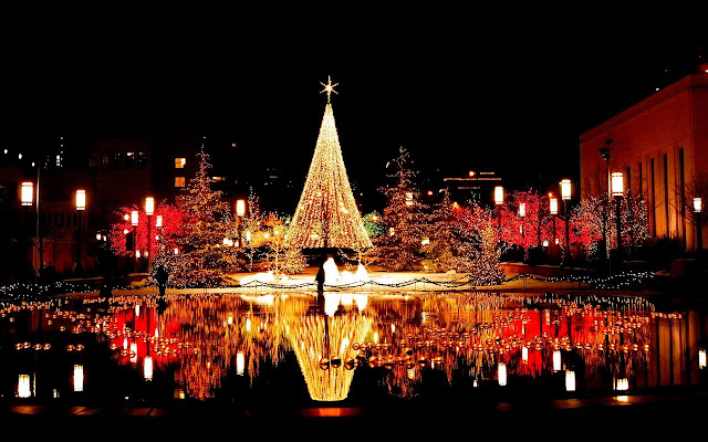 beautiful-christmas-tree-images