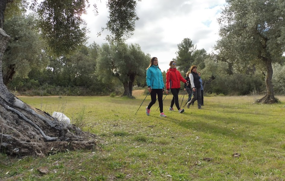 nordic walking,mindfulness