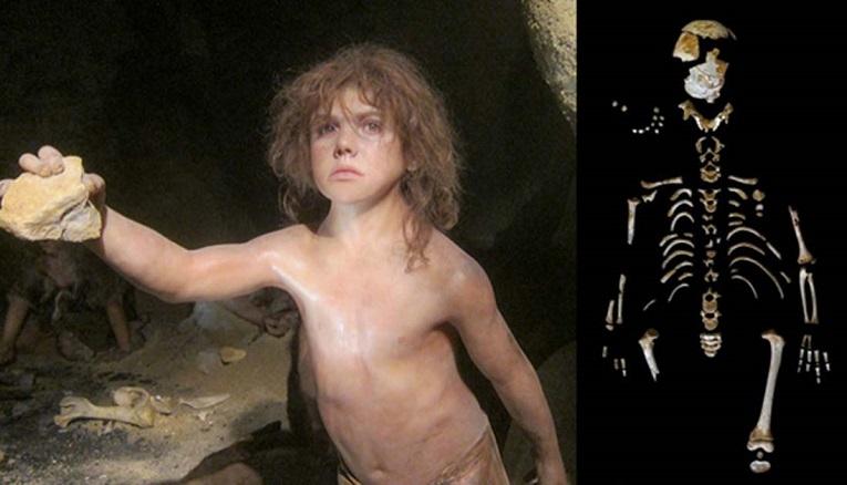 Reconstruindo como os neanderthales cresceram, com base em um filho da caverna El Sidrón
