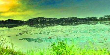 Danau raja di Indragiri Hulu Riau