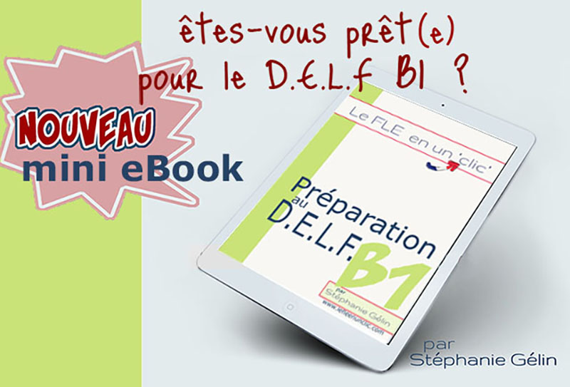 mini ebook préparation DELF niveau B1, Le FLE en un clic, DELF B1