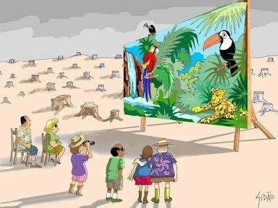Natureza destruída gera pobreza e miséria