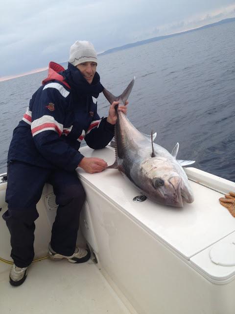 pêche de la sériole