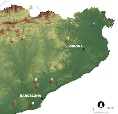 Dog burial as common ritual in Neolithic populations of north-eastern Iberian Peninsula