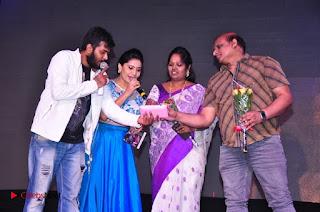 Inkenti Nuvve Cheppu Movie Audio Launch  0014.jpg