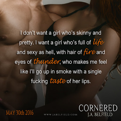 Teaser Picture Cornered 1