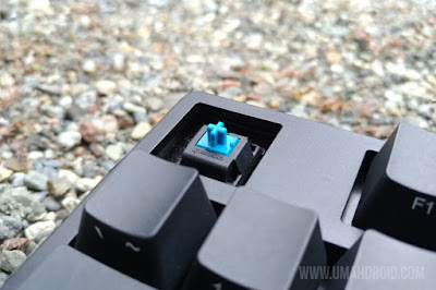 Cherry MX Blue Switch