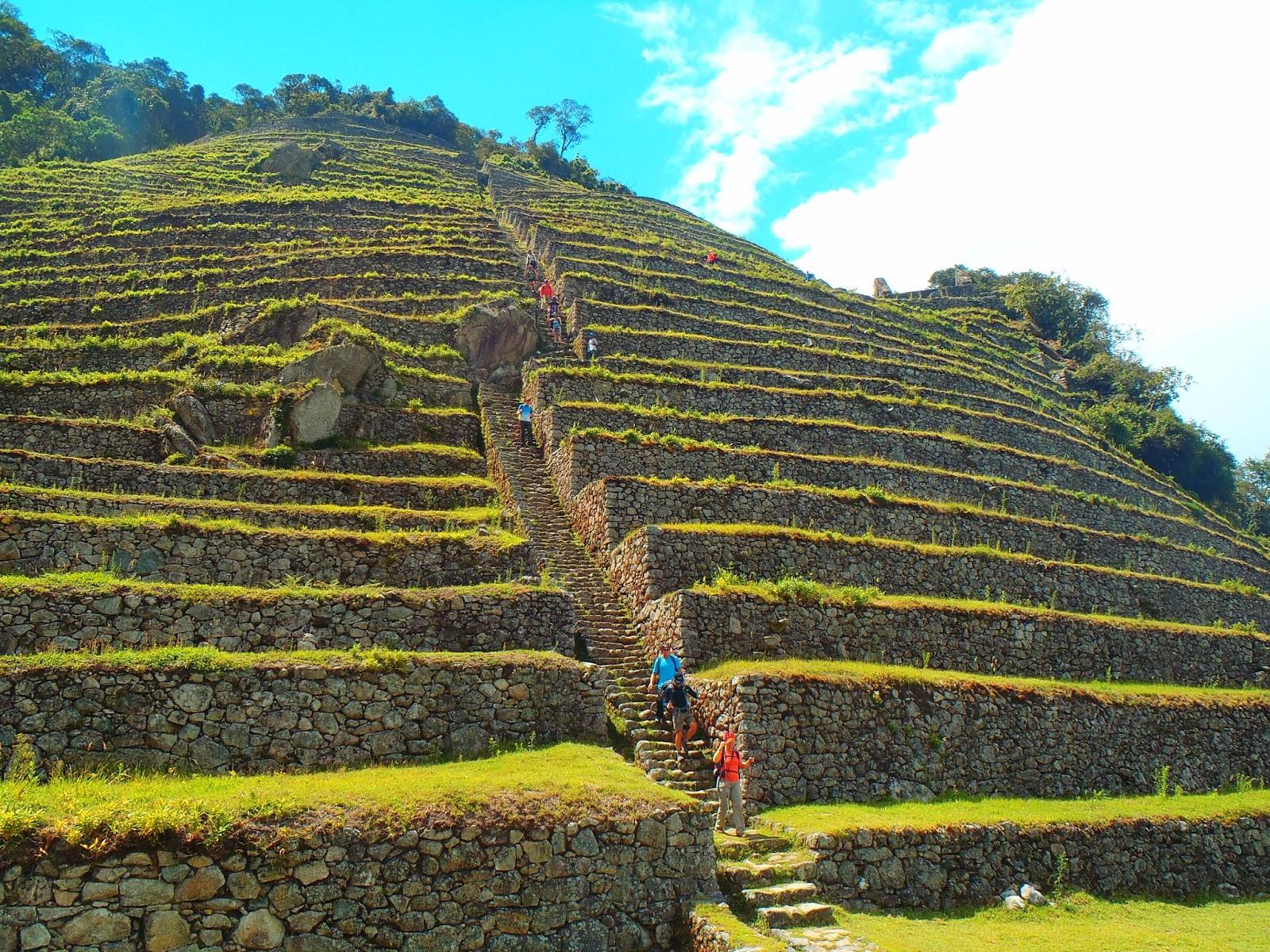 Intipata Peru