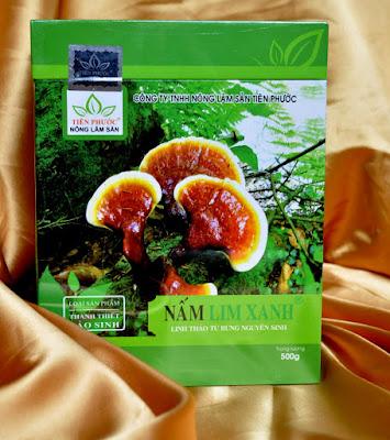 Bất ngờ công dụng làm đẹp da hiệu quả của nấm lim xanh tự nhiên - 132357