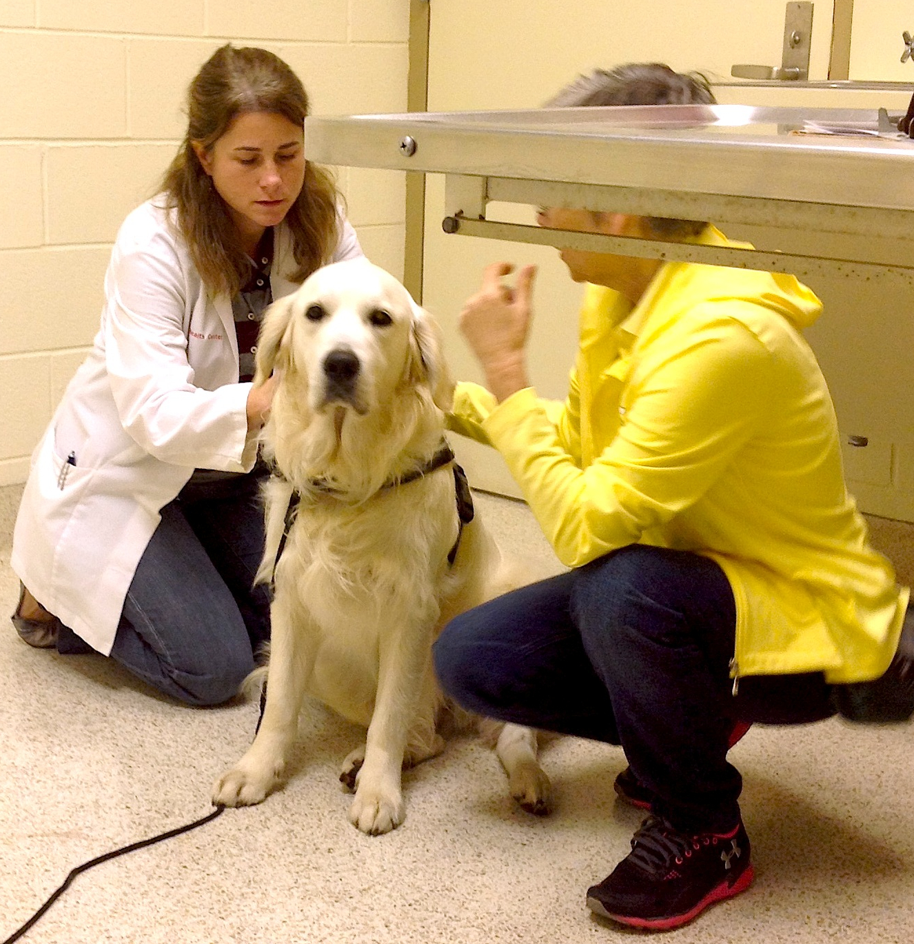Back to MS State Vet School Hospital: Shai sees Specialist | Shai