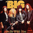 Biografi Mr BIG