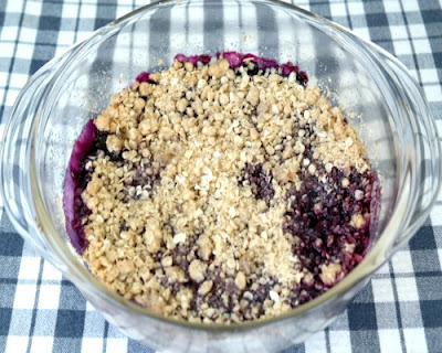 Homemade Blueberry Crisp Recipe