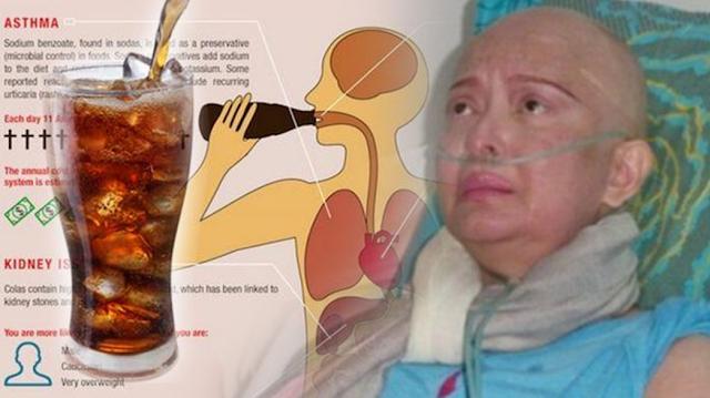 Sudah Diingatkan Ilmuan Amerika , Minuman Kesukaan Yana Zein Ini Ternyata Pembawa Kanker Payvdara, Lihat Hasilnya!